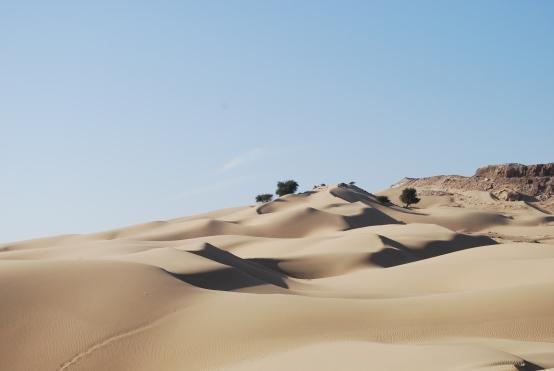 Oman 2013 (185)