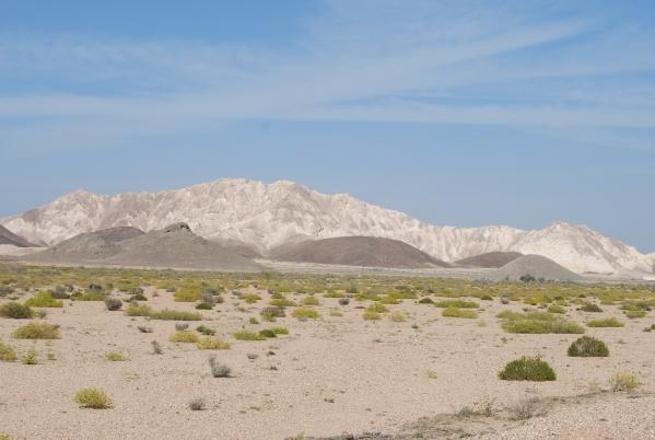 Oman 2013 (211)