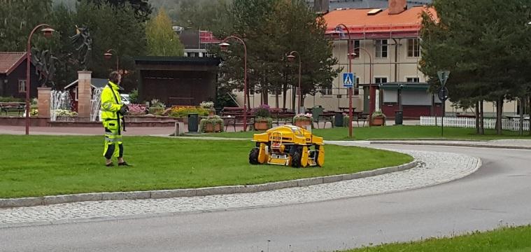 Die Rasenmäher-Roboter sind ja ganz modern hier, aber der hier ist sogar besser: ferngesteuert.