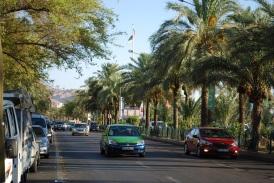 Aqaba - Grün und quirlig