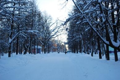 Verschneiter Park in Kirov