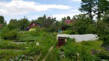 Eingentlich ein schöner Garten